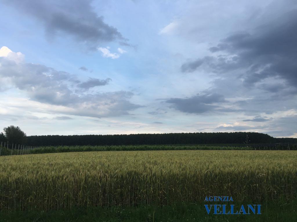 Vendita Terreno Residenziale Soliera